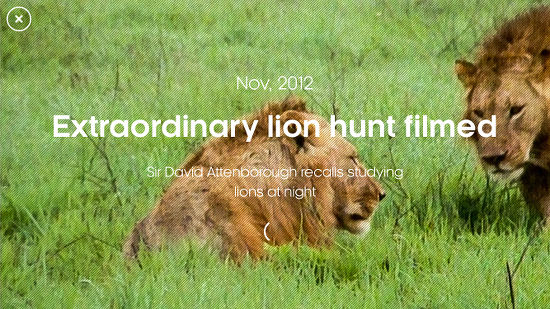 Attenborough Story of Life app for the iPhone - a clip of lions hunting