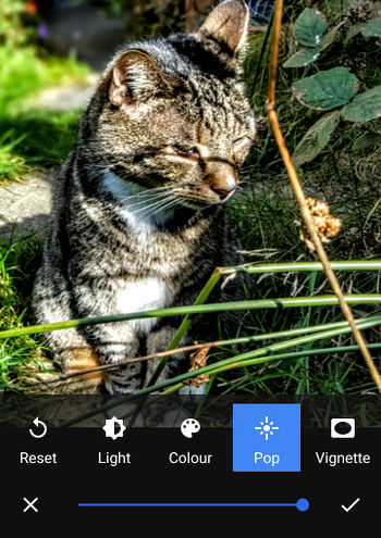 Correct photo flaws on your phone with the Google Photos app