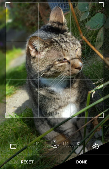 Tilt and crop photographs using Google Photos on your phone