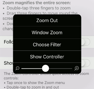 The zoom feature in iOS accessibility settings