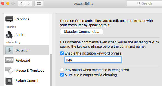 Set up dictation using the Accessibility features in macOS Sierra on the Apple Mac