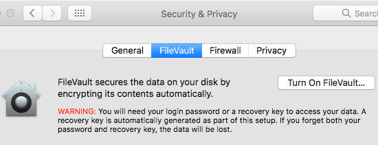 Turn on FileVault on the Apple Mac to securely encrypt the contents of the disk