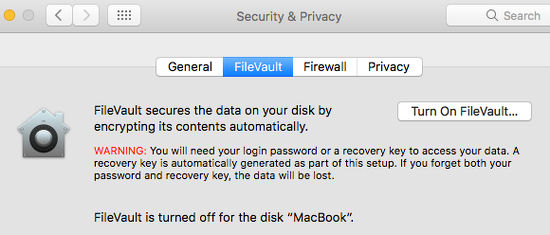 FileVault encrypts the disk on the Apple Mac