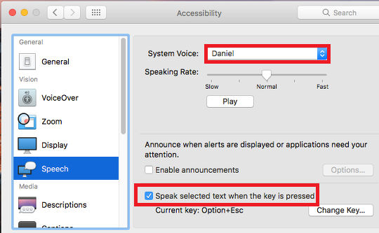 Accessibility options in System Preferences on the Apple Mac