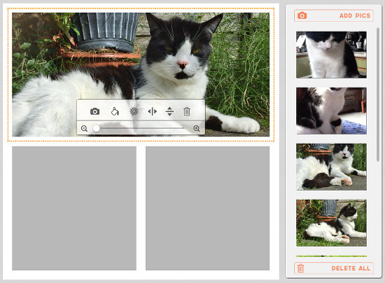 Drag photos and drop the on the collage in Composure on the Apple Mac