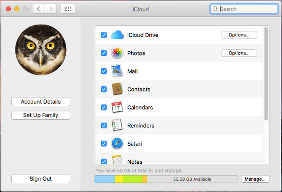 iCloud settings in System Preferences on the Apple Mac