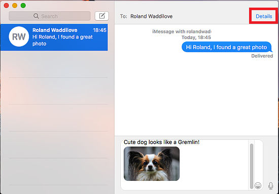 A message in the Messages app on the Apple Mac