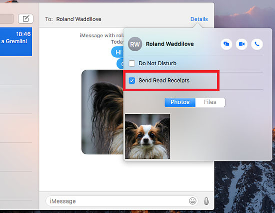 Choose who you send read receipts to in the Messages app on macOS