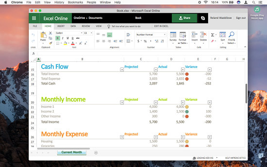 Microsoft Excel web app running in a window on the desktop on the Apple Mac