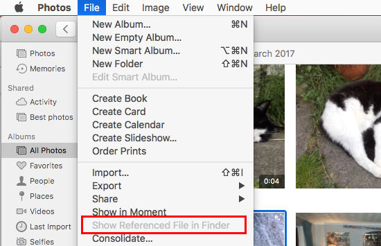 File referenced photos in the Photos app on the Apple Mac