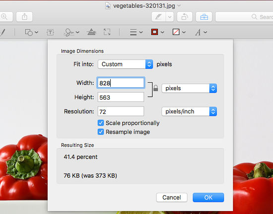 Resize a photo using the tools in the Mac Preview app