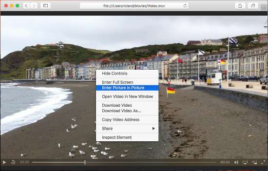Using Safari browser as a video player on the Apple Mac