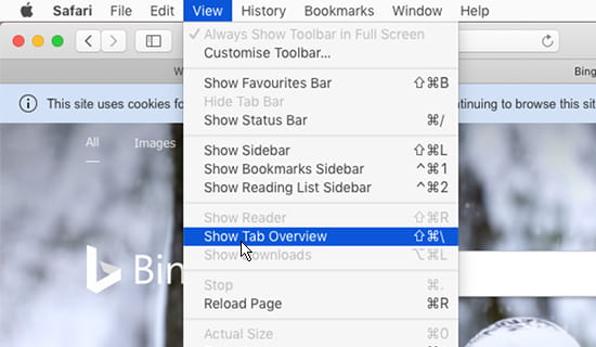 Who can see Safari and Chrome tabs on your Apple Mac? | RAW Mac