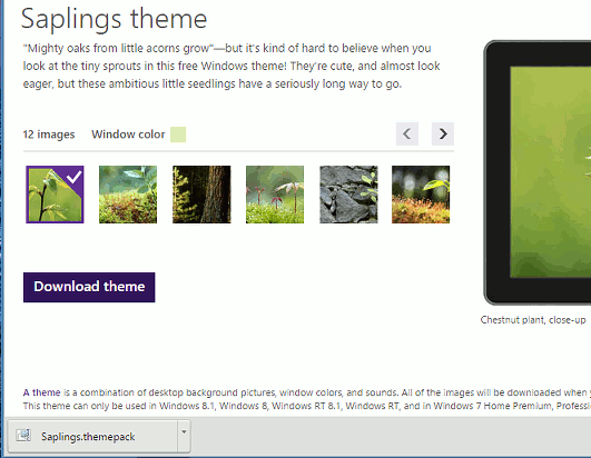 Add great spring themes to Windows and colour the desktop