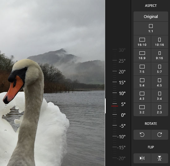 Photo Editor | Polarr crop and straighten tools to fix your photo flaws