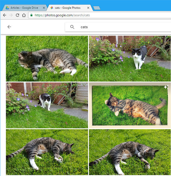 Search for objects, scenes and locations in Google Photos
