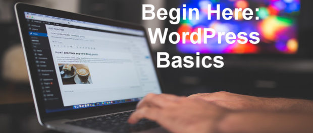 Learn the basics of WordPress. Online course covering how to create posts and pages, install and use themes, create menus and more