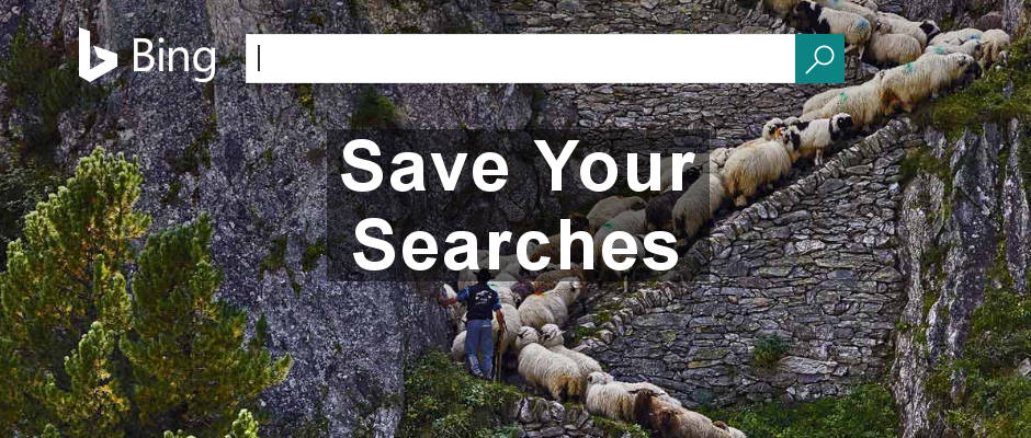 Save media files found in Bing searches to Bing itself. It provides a great online organiser for the photos and videos you find in searches