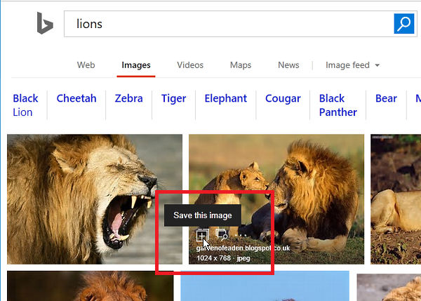 Mouse over the image thumbnails in Bing search results for options
