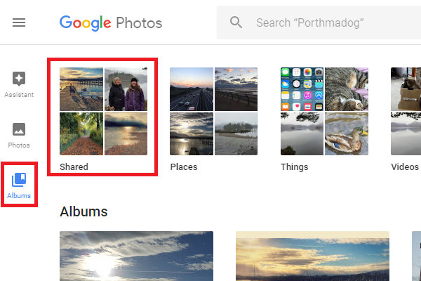 Google Photos albums showing shared albums